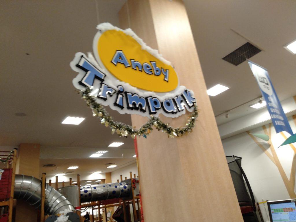 【江東区】子供いるならアネビートリムパーク!きれいなアスレチックで雨の日も運動できる♪